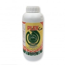 Plex Ca