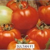 Sultan F1