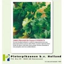 Leaf Commun PPZ