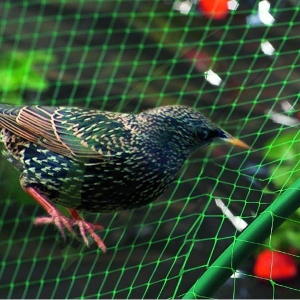 Plasă contra păsări