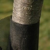 Plasă protecție pentru pepiniere