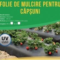 Folie neagră UV găurită pentru căpșuni