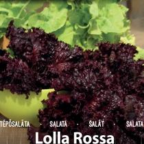 Lolla Rosa