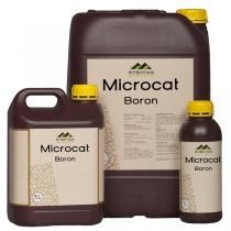 Microcat Bor