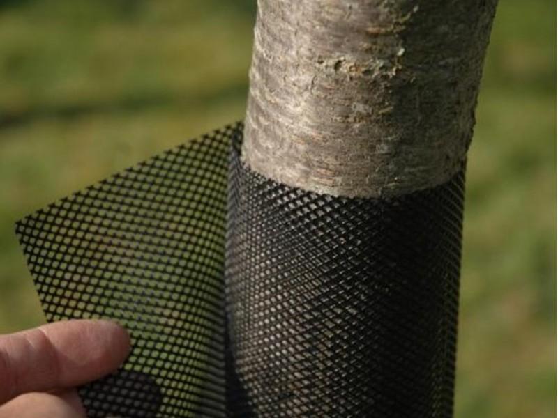 Plasă de protecție pepiniere TREEX - FLEXGUARD