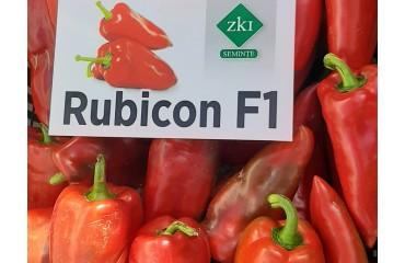 Ardei Rubicon F1 în Mănăștiur